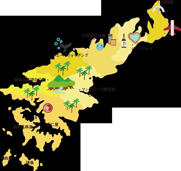 大島 スポット 奄美 観光